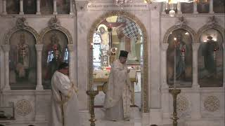 Saint Nicholas Greek Orthodox Cathedral of Tarpon Springs Live Stream