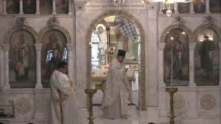 Saint Nicholas Greek Orthodox Cathedral of Tarpon Springs Live Stream