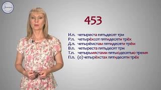 Уроки русского Целые числительные.
