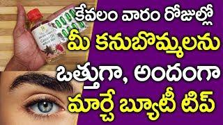 కనుబొమ్మలు ఒత్తుగా అవ్వాలంటే I How to Get Thick Eyebrows I Health Tips Telugu I Everything in Telugu