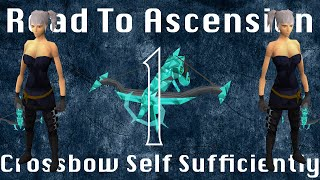 Road to Ascension Bow Self Sufficiently Ep. 1 The Foundation Gainz