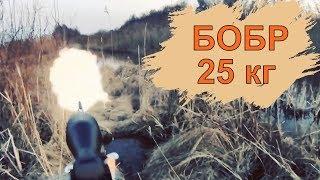 Охота на бобра (25кг) с карабином в Беларуси