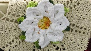 Flávio Adalto – Flor Margarida em Crochê