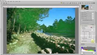 Урок по работе в Nikon Capture NX 2