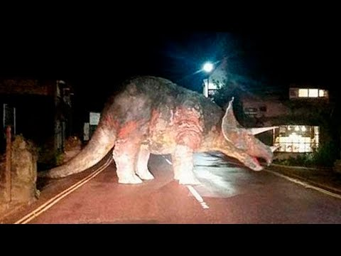 10-dinosaurs-caught-on-camera-in-real-life