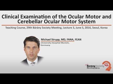 Clinical Examination of the Ocular Motor and Cerebellar Ocular Motor System