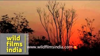 Sunset at Mysore - India