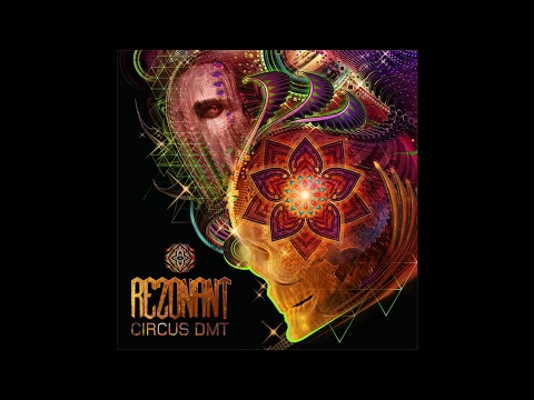 Rezonant - Funky Junkie