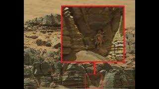 'Неуместные артефакты' находят во всех уголках планеты.