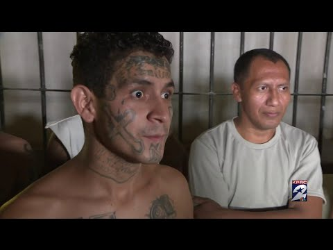 KPRC2's Jacob Rascon shares a closer look at the deadly MS-13 gang