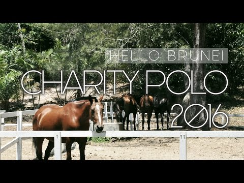 Hello Brunei | Charity Polo Day 2016