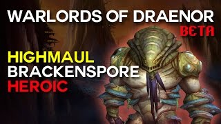 Brackenspore Heroic - Highmaul - Warlords of Draenor Beta Raid Test
