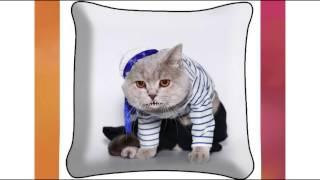 Поздравление с Днем Рождения Ирине от кота Матроскина