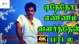 ஏதோதோ எண்ணம் வளர்த்தேன் || Yedhedho Ennam Valarthen ||K. S. Chithra Melody H D Song