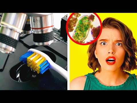 Download COMMON OBJECTS UNDER MICROSCOPE || 26 HOME EXPERIMENTS