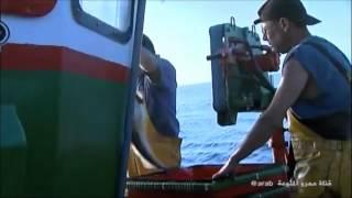 فيلم وثائقي حول صيد السمك في فرنسا