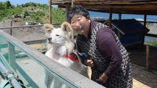 「わさお」と飼い主の菊谷節子さん 2013年6月