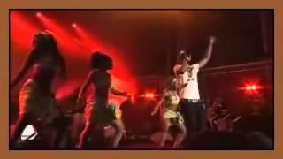 Congo   Fally Ipupa   Celebration of African Rhythms   Bastille Paris