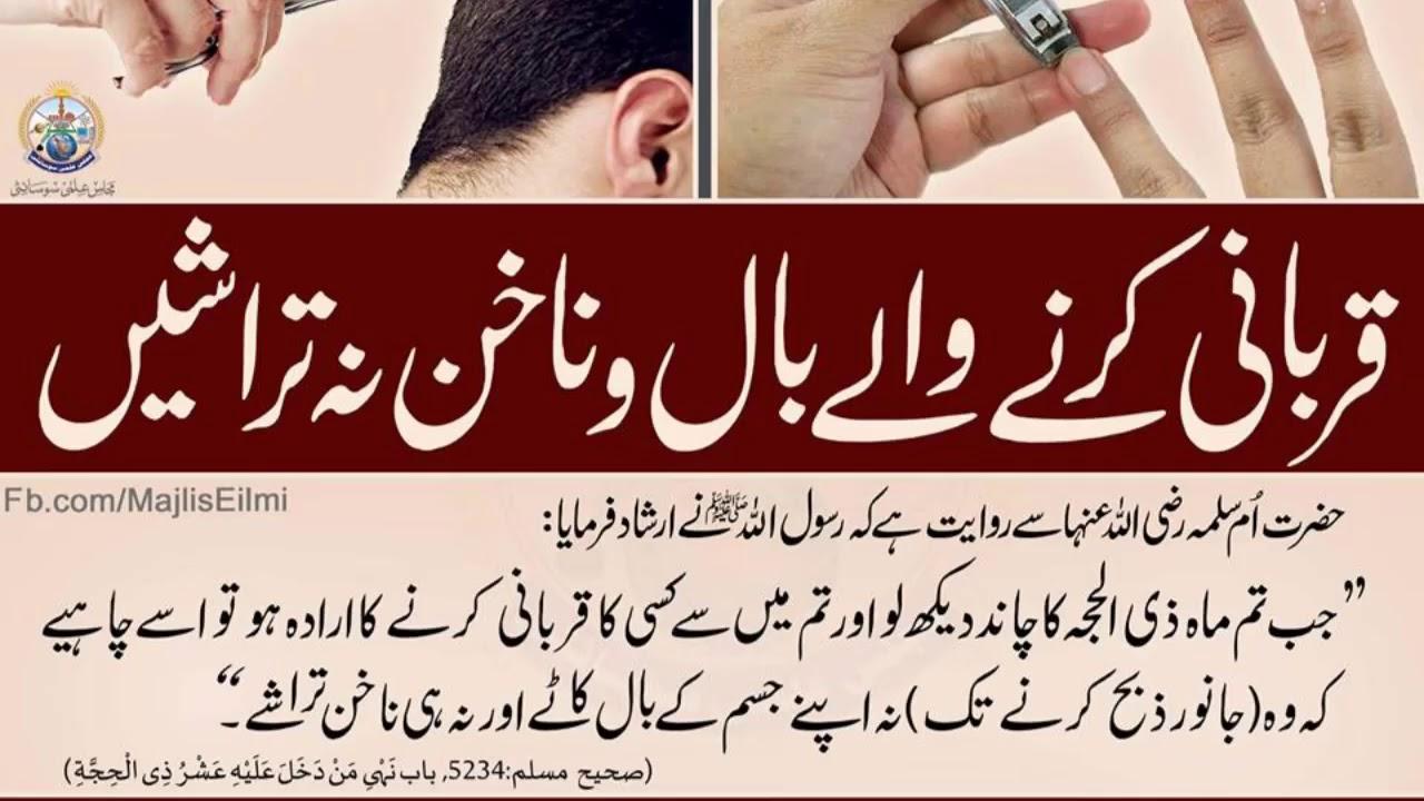 Qurbani Karne waalein Apne Nails & Hair Cut na karein - YouTube