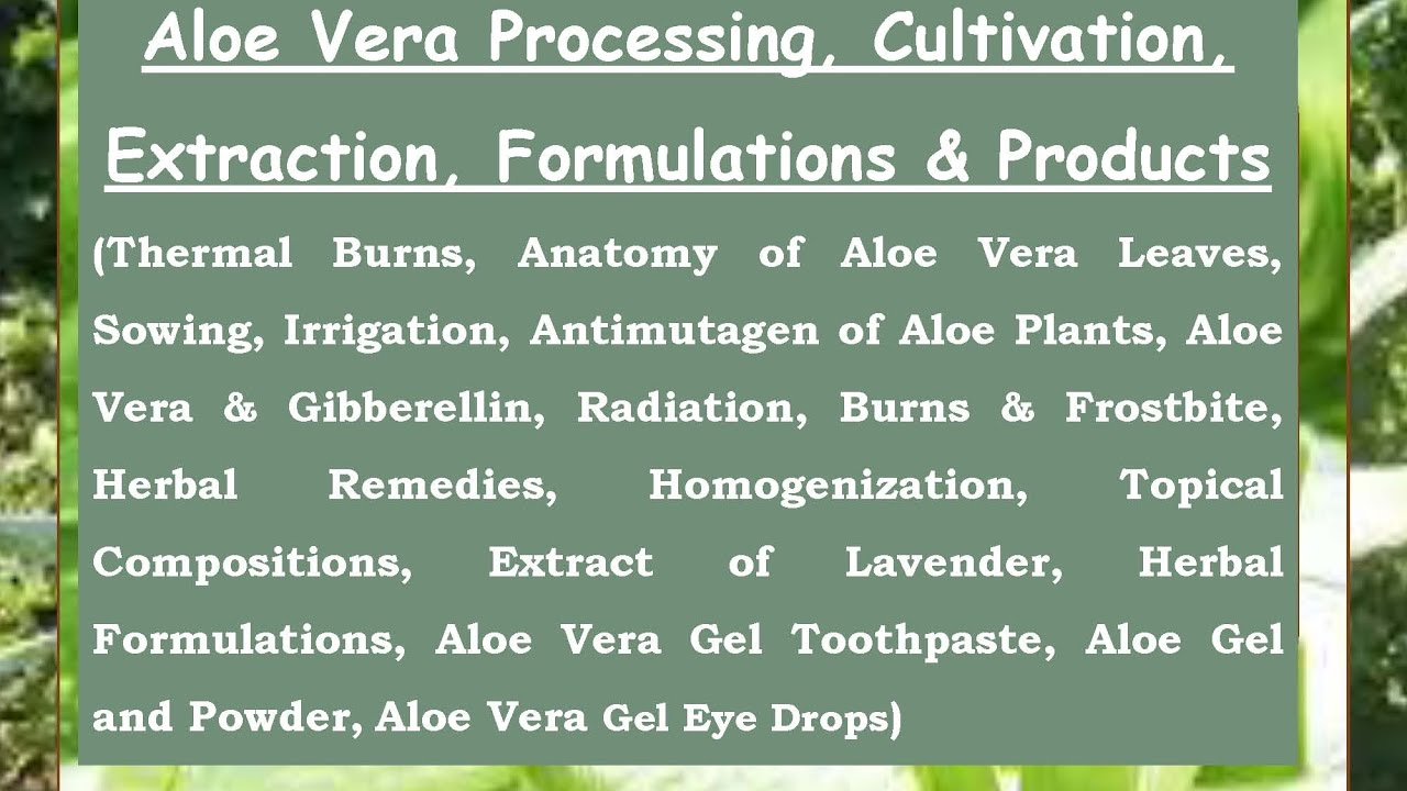 Aloe Vera Processing, Cultivation, Extraction, Formulations ...