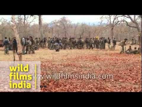 Naxal attack in Sukma