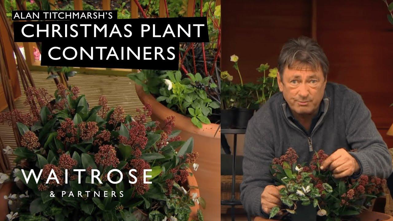 Alan Titchmarshs Christmas Containers Waitrose Garden YouTube