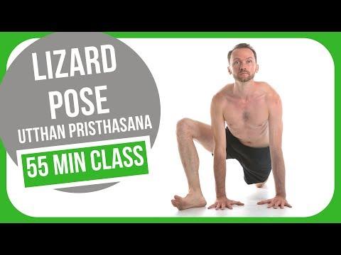 Lizard pose Full Body Flow [Utthan Pristhasana]