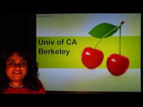 Studying in UC - Berkeley