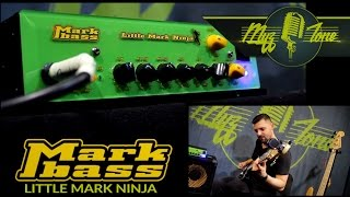 Алексей Соколов - Mark Bass Little Mark Ninja Head - Richard Bona signature Amp - Demo