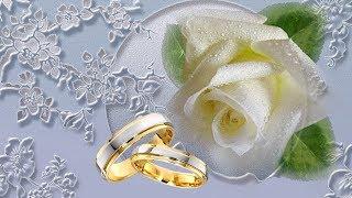 Свадебный футаж hd скачать бесплатно