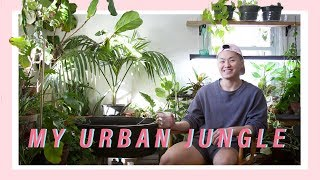 MY INDOOR JUNGLE TOUR (Living with 300+ Houseplants)