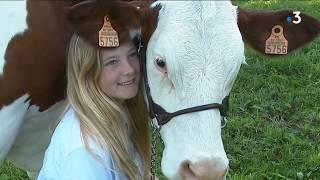 La belle histoire : Manon a apprivoisé sa vache montbéliarde
