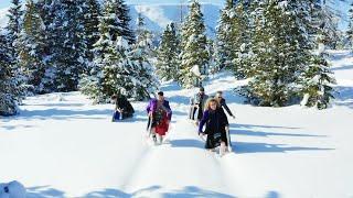DAHOAM - Winter Musi Special 2021 - DIE LAUSER