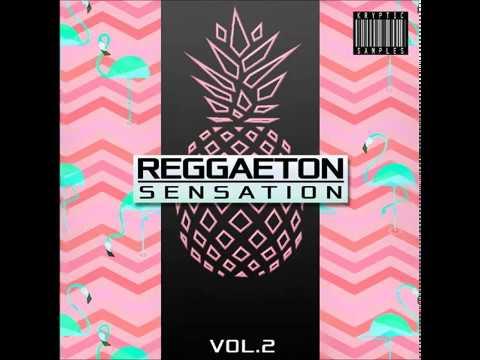 REGGAETON SENSATION 2 by KRYPTIC SAMPLES ~ Essential Reggaeton Samples ~ Reggaeton Series