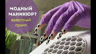 Наращивание ногтей на типсы ТРЕШ маникюр Корова на ногтях Дизайн ногтей Svetlana nailart