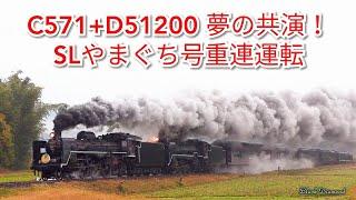 C571+D51200重連 SLやまぐち号 ~夢の重連、再び!~ 2019.11.24