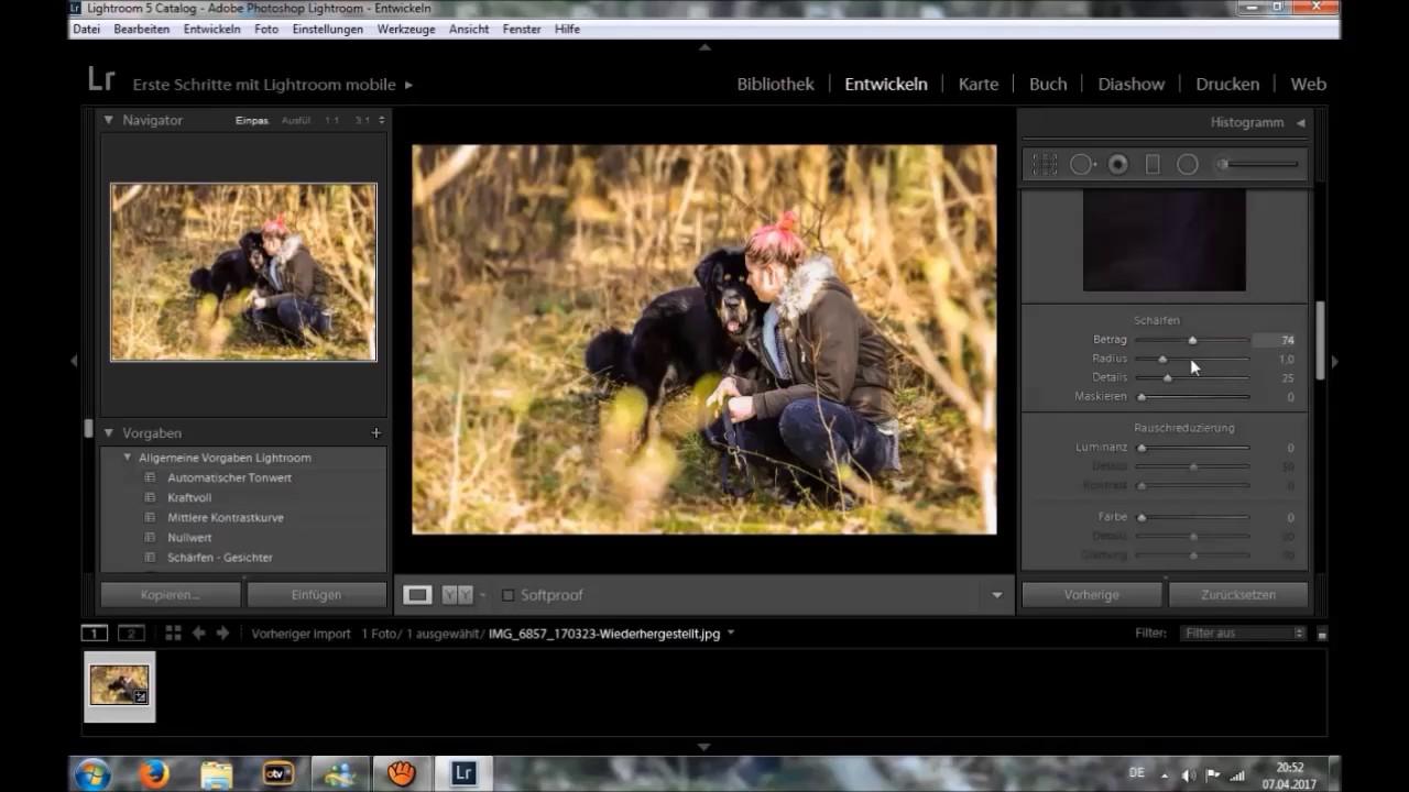 Photoshop cc hintergrund unscharf