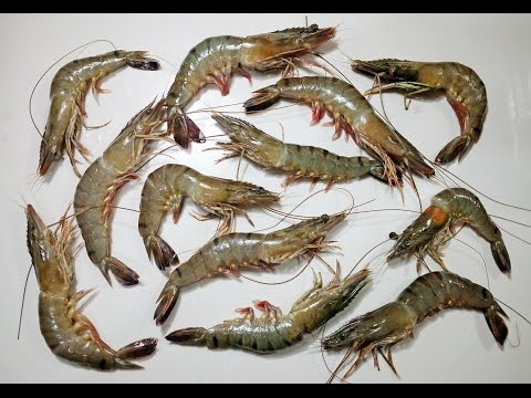 How To Clean, Cut and De-Vein Tiger Prawn/Shrimp | Cooking Basics - Chef Lall's Kitchen