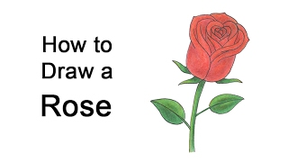 How to Draw a Rose for Valentine
