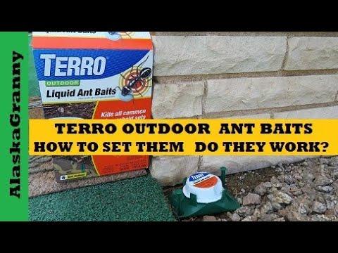Terro Outdoor Liquid Ant Bait Traps
