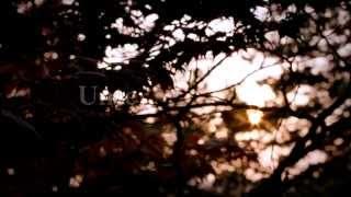 UNTER DER HAUT Official Trailer