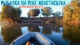 Неделя рыбалки на реке Анастасьева. Столько рыбы мы еще не видели