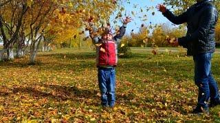Осень, дети, листья...