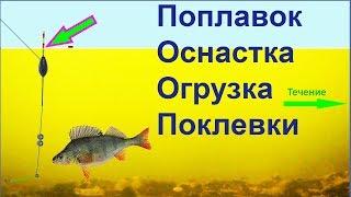 ПОКЛЕВКИ на поплавок. Ловля в проводку, в стоячей воде, Fishing angeln la pesca câu cá 钓鱼 рыбалка