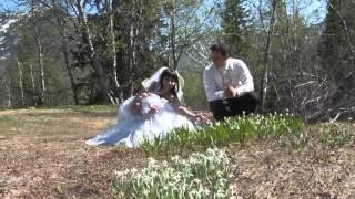 Наше свадебное видео АПАТИТЫ-КИРОВСК июнь 2013