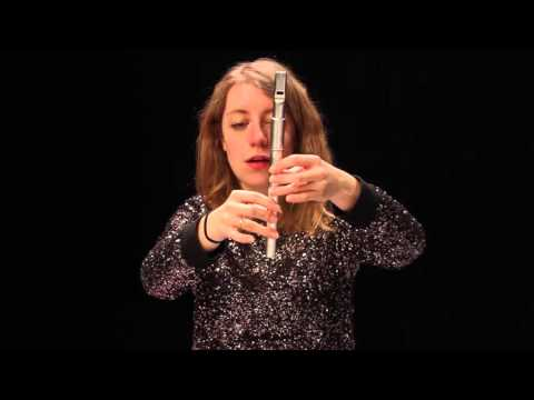 Tin Whistle - Finger Techniques and Effects