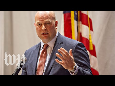 Matthew Whitaker's past criticisms of Donald Trump