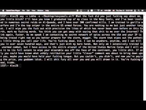 Lekha the Indian Computer Recites the Navy Seals Copypasta