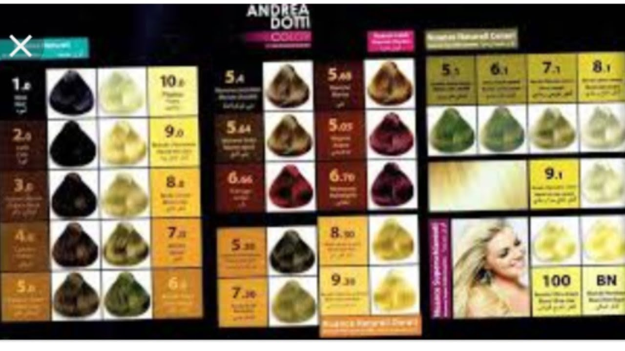 كاتالوج اندريا دوتي لمن يهمه الامر Catalogue Andrea Dotti Youtube