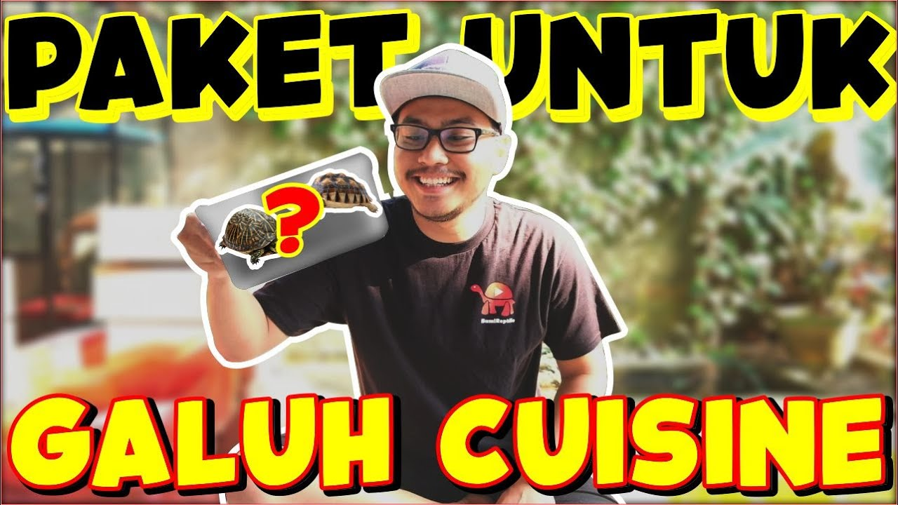 DI RAMPOK GALUH CUISINE ! | PACKING KURA DARAT UNTUK SOHIB ANE GALUH CUSINE !!!